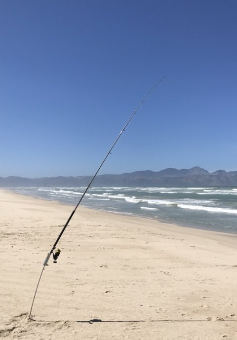 False Bay fishing