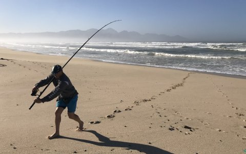 MMM cape town fis false bayhing adventures wikus shark fight